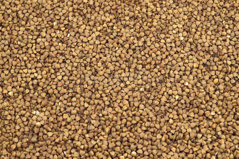 Textured background of buckwheat grains. stock image