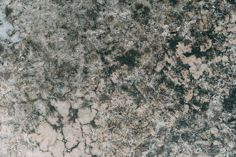 Textured and Background Grunge Concrete wall or dirty Cement floor, Concrete dirty with moldy stock image