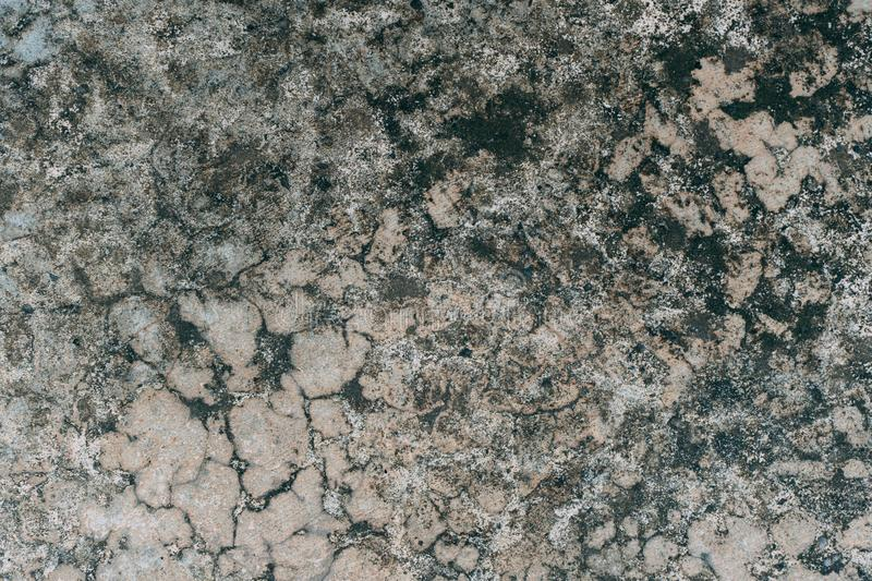 Textured and Background Grunge Concrete wall or dirty Cement floor, Concrete dirty with moldy stock photo