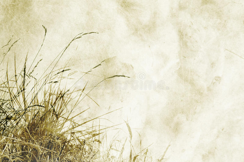 Download Textured Background With Herbs And Space For Text Stock Illustration - Image: 15409092