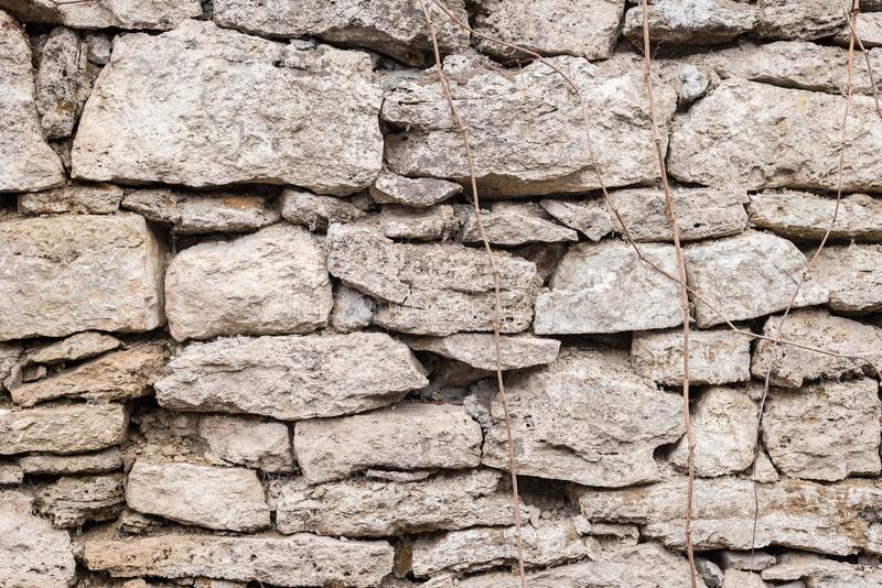 Textured background irregular natural stone wall is made of different stones with elements of natural vegetation in the royalty free stock photos