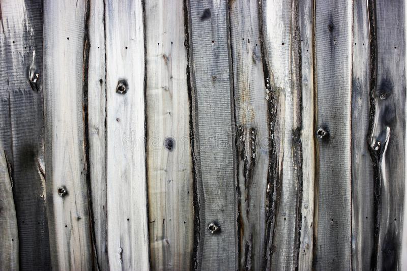 Textured background from an old wooden fence. Solid wood texture. Textured background from royalty free stock photos