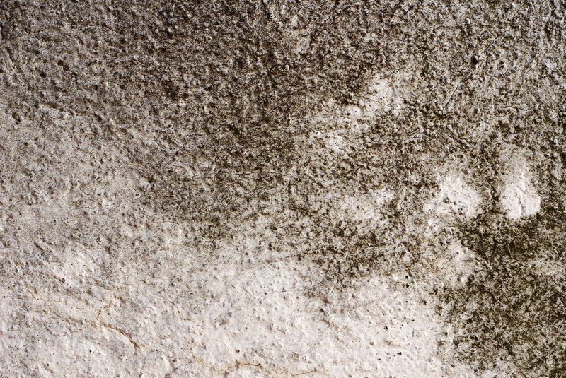 Download Textured Concrete Background Stock Photo - Image of grunge, spray: 8383394