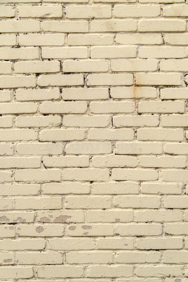 Textured, expressive wall of light-colored bricks stock photo