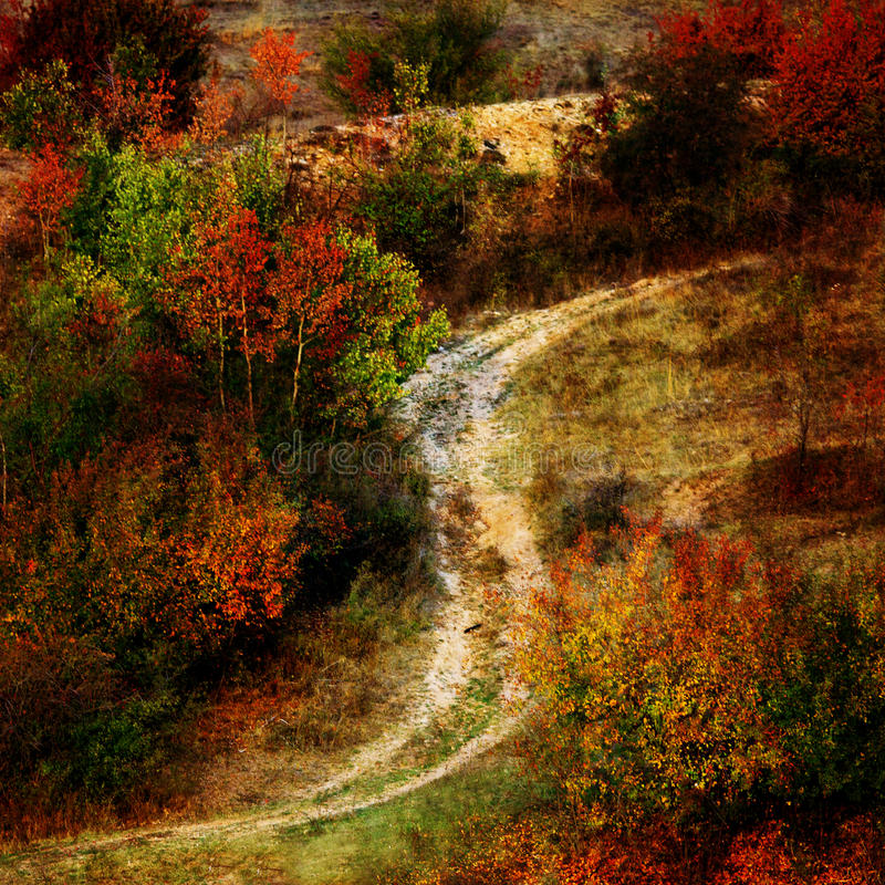 Textured jesień fotografia stock
