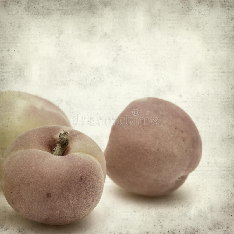 Textured old paper background. With small apricot stock images