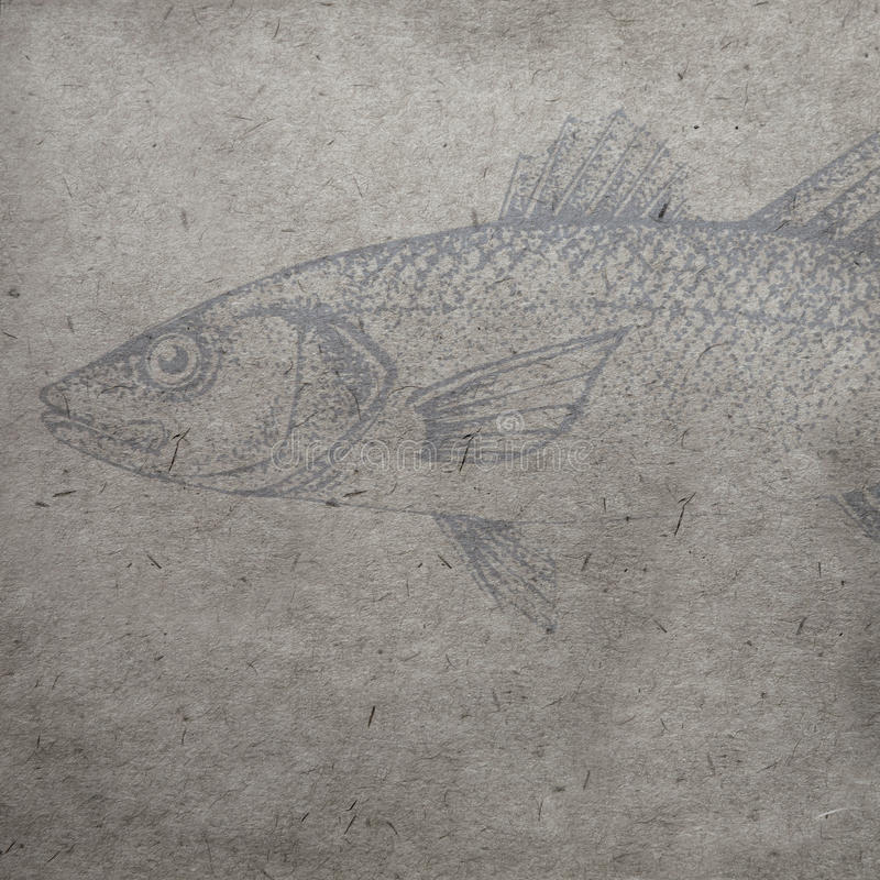The textured old paper background with watercolor fish outlines royalty free stock photography