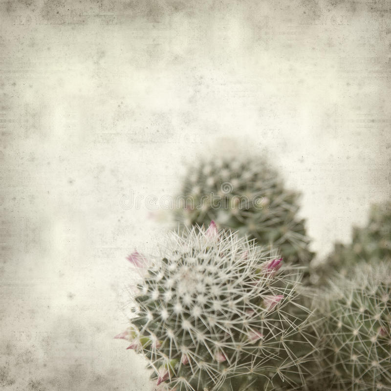 Free Textured Old Paper Background With Cactus Royalty Free Stock Image - 17733436
