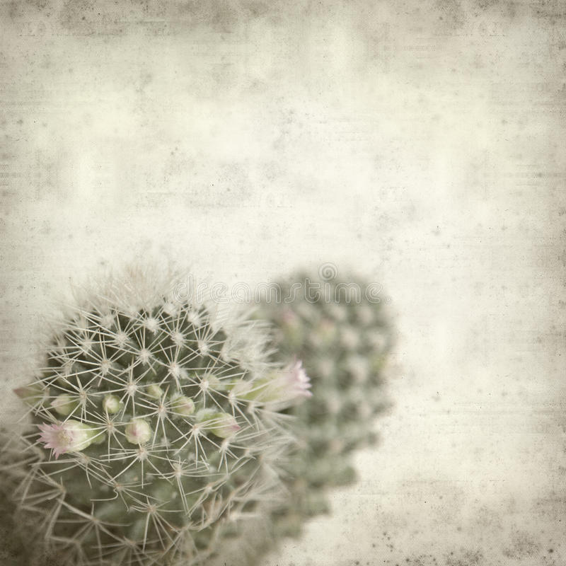 Free Textured Old Paper Background With Cactus Royalty Free Stock Photo - 17733545