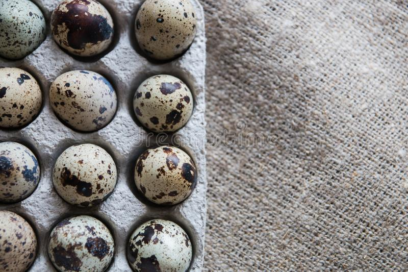Textured spring background with small quail eggs on burlap background. Eco products. Quail eggs in cardboard packaging. Textured spring background with small royalty free stock photo