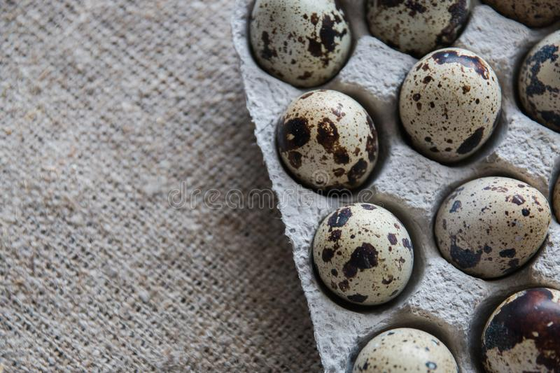 Textured spring background with small quail eggs on burlap background. Eco products. Quail eggs in cardboard packaging. Textured spring background with small stock images