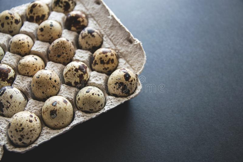 Textured spring background with small quail eggs. Eco products. Quail eggs in cardboard packaging.  stock image