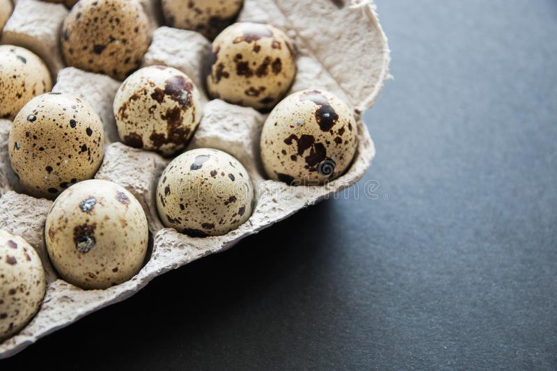 Textured spring background with small quail eggs. Eco products. Quail eggs in cardboard packaging.  royalty free stock photo