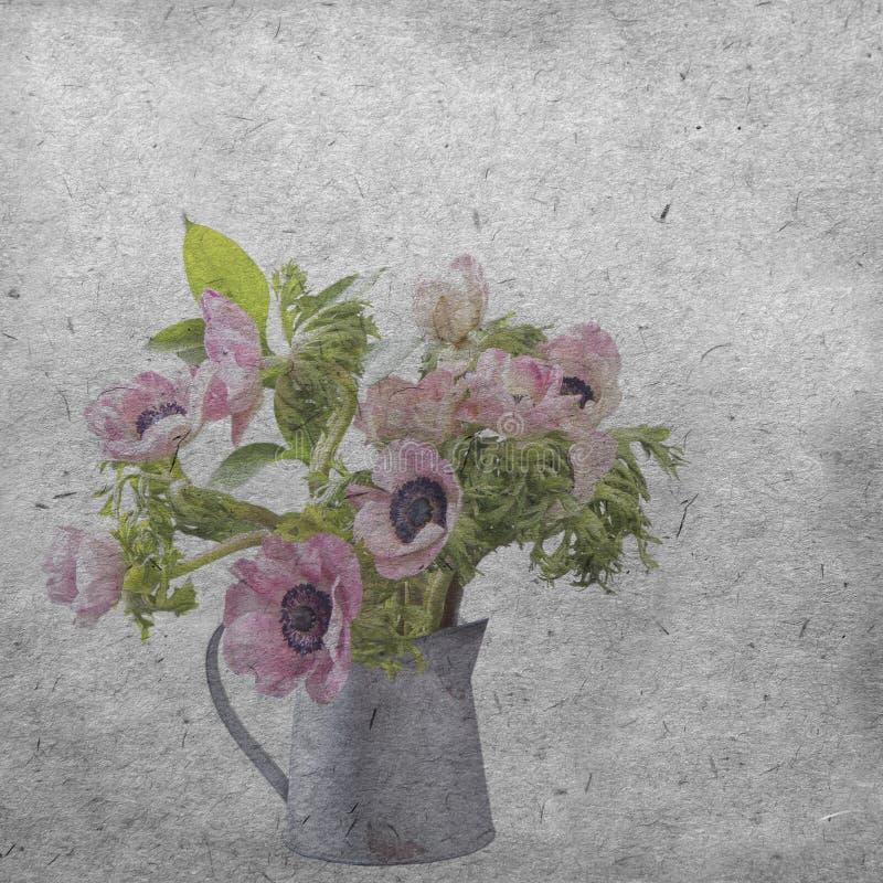 Textured stary papierowy tło z jasnoróżowym anemonem zdjęcie stock