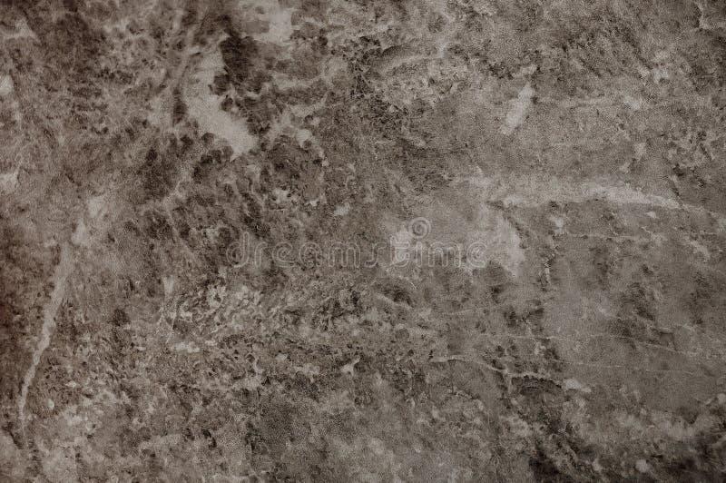 Textured texturerade den gr?a oj?mna v?ggen som en bakgrund med ?der royaltyfri foto