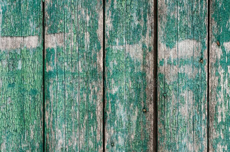 Textured weathered wooden surfase with vertical boards, cracked blue green royalty free stock photography