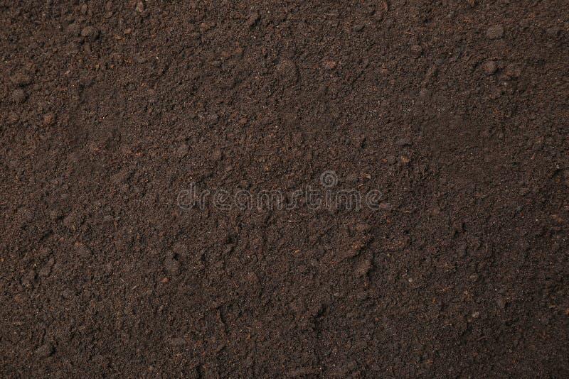 Textured ziemi powierzchnia jako t?o ?yzna ziemia obrazy royalty free