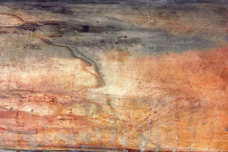 Texturen av den gamla torkade trädstammen utan skällnärbild arkivbild
