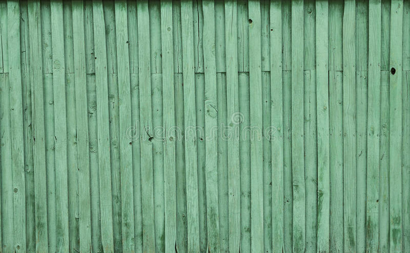 Texturen av den målade gröna trädbakgrunden arkivfoto