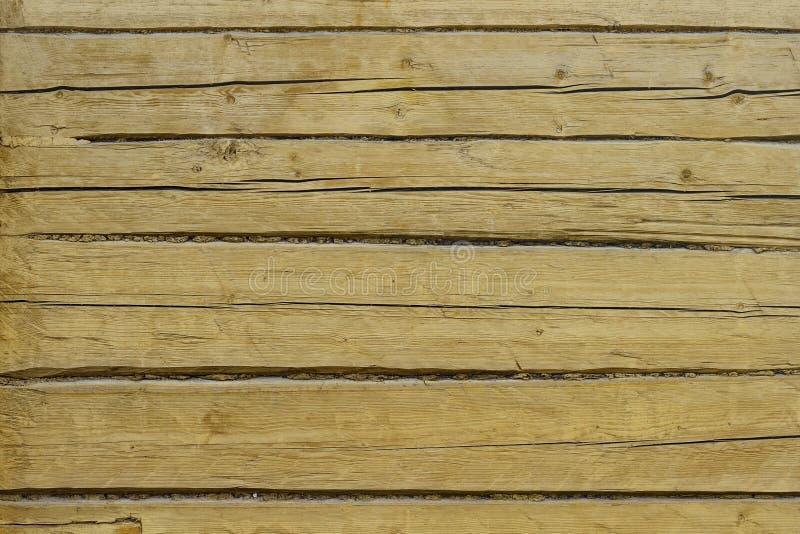 Texturen av den målade gula trädbakgrunden fotografering för bildbyråer