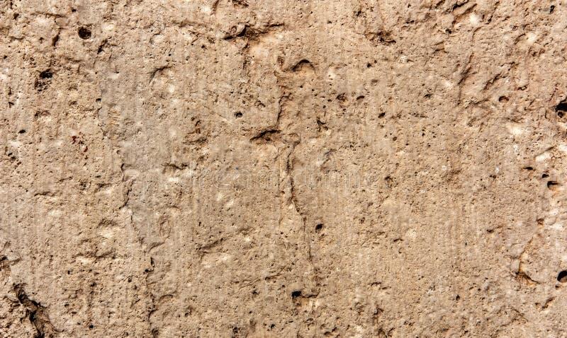 Texturen av kalkstenskottnärbilden royaltyfri foto