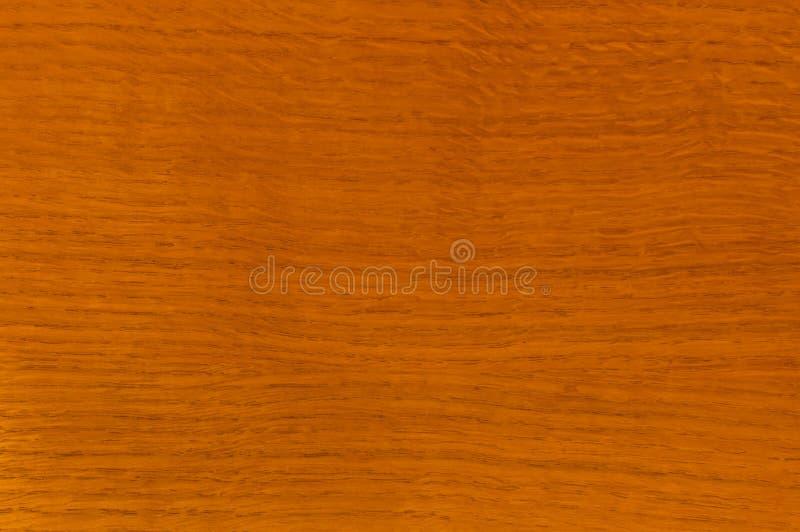 Texturen av tr?, ek, lackade royaltyfria bilder