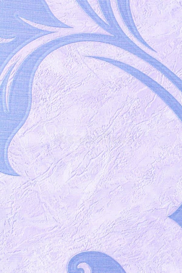 Texturen ?r ljus - bl?tt med ribbat Genomdr?nkt himmelf?rg, n?rbild arkivbild