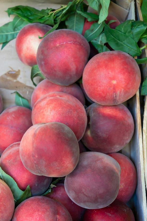 Texturera bakgrund av nya organiska söta röda mogna persikor på gatamarknaden royaltyfri fotografi