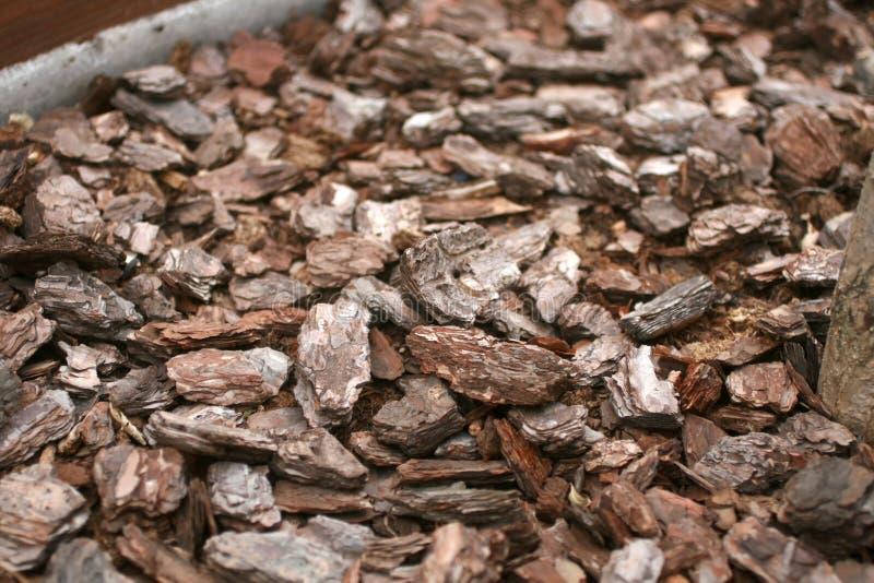 Texturera komposttäckning för växter Komposttäckning i krukan för växter royaltyfri bild