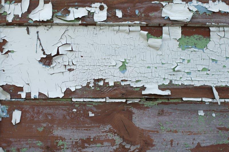 Texturerad bakgrund av gamla br?den som t?ckas med vit m?larf?rg som kn?ckas fr?n gamling royaltyfria bilder