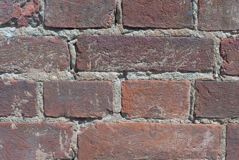 Texturerad bakgrund: gammal modell för tegelstenvägg royaltyfri bild