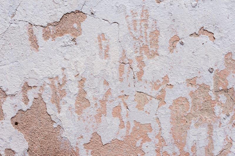 Texturerad knäckt murbruk för bakgrund som vit strilades delvist med en rosa färg, skuggade den spruckna väggen Kan användas som  arkivfoto