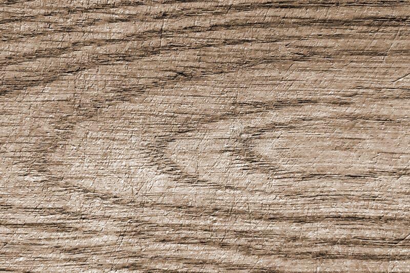 Texturerad yttersida av det gamla ekbrädet fotografering för bildbyråer