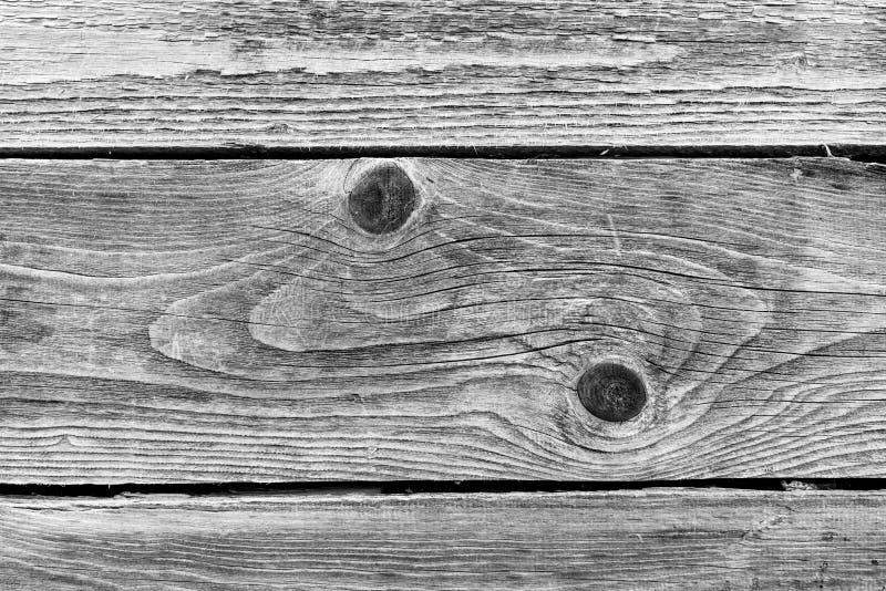 Texturerade gamla sörjer trä i svartvitt royaltyfri bild