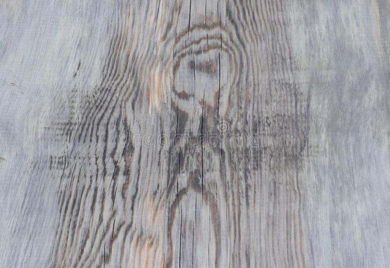 texturerade organisk modellyttersida f?r abstrakt bakgrund tr?tr? royaltyfri foto