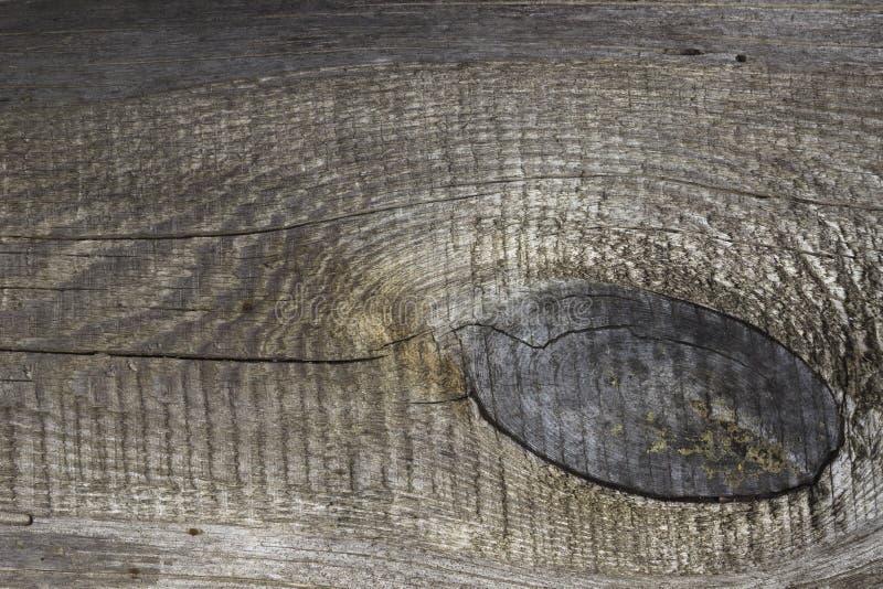 Texturerat träbräde royaltyfria bilder