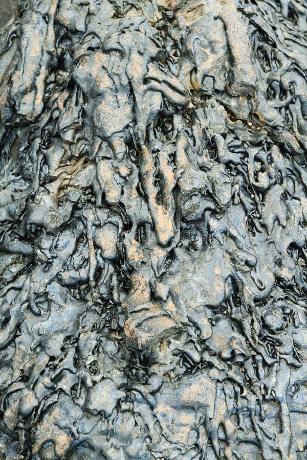 Textures of black lava (pahoehoe) in Santiago island. Galapagos, Ecuador stock photos