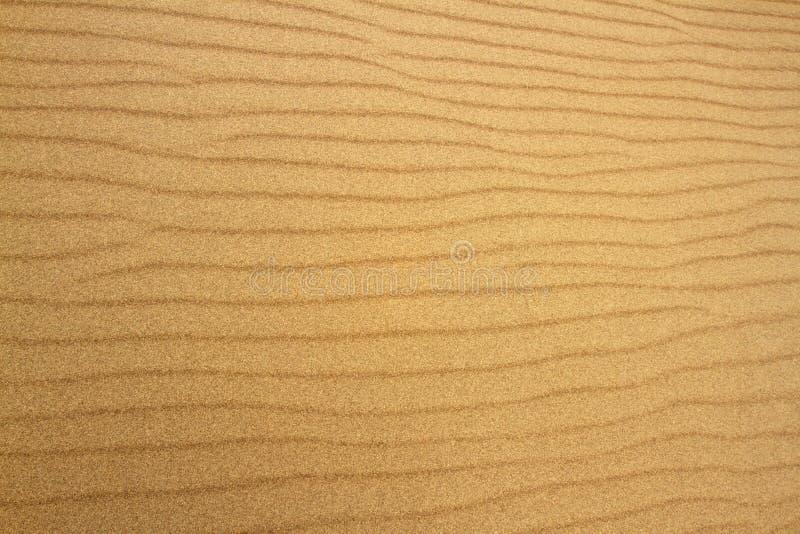 Textures créées dans des vagues de sable images libres de droits