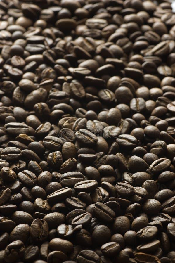 Textures de café photo stock