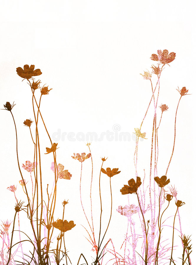 Textures florales illustration stock