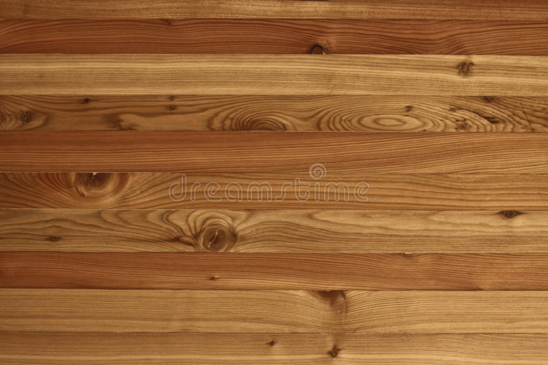 Textures larix sibirica. Textures inlaid shield of Siberia larch background