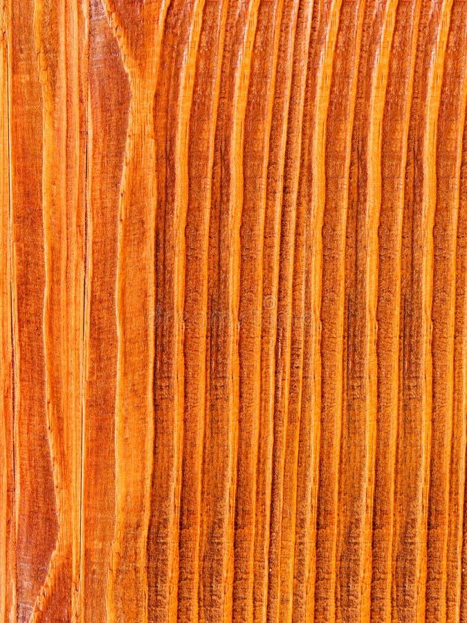 Textures o pinho da árvore imagem de stock