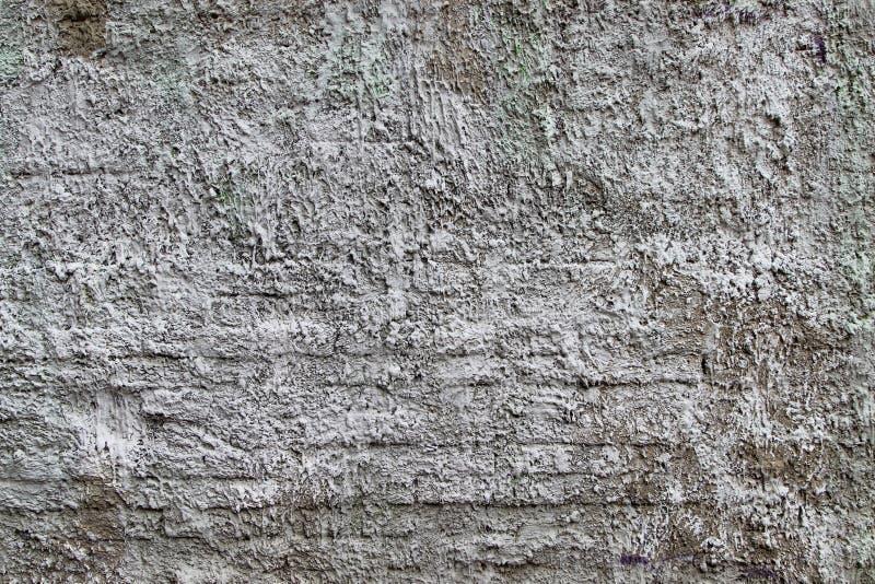 Texturice de un plasterwork usado como capa exterior en un edificio fotos de archivo libres de regalías