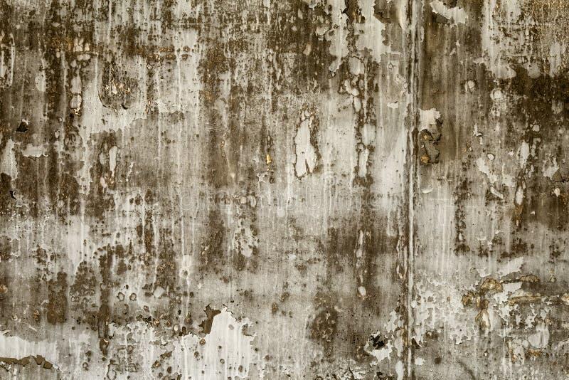 Texturisé en bois photos stock