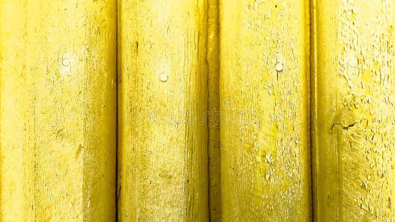 Textursamling Tr?d Texturer träbakgrund gammalt tr? arkivfoto