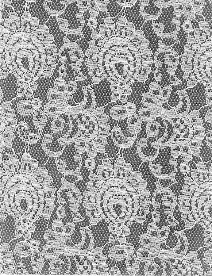 Texturvit snör åt modellen Grey Background arkivbild