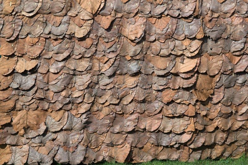 Textuur en achtergrond van Uitstekend die dak met droog teakblad wordt gemaakt royalty-vrije stock foto's