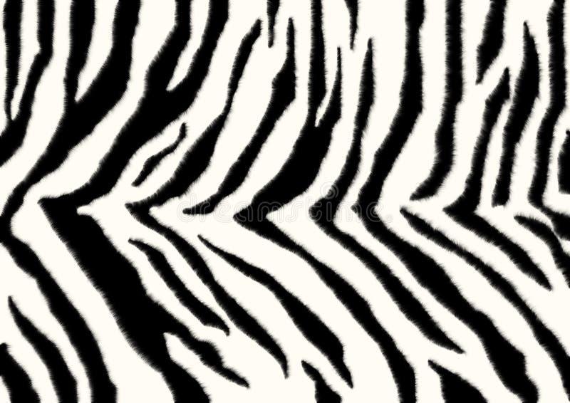 Textuur - huid van een zebra stock afbeelding