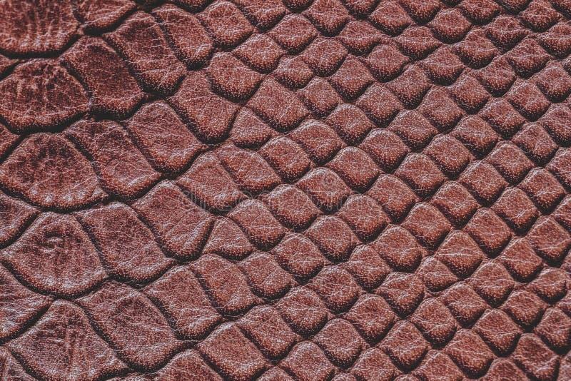 Textuur van bruin en echt leder, ingegraveerd onder de huid van reptielen, natuurlijke achtergrond royalty-vrije stock foto's