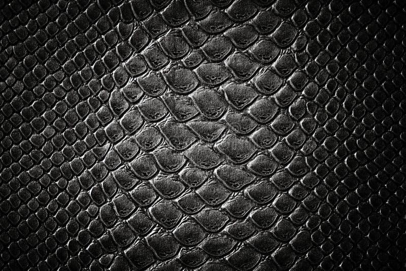 Textuur van de krokodil de zwarte huid royalty-vrije stock afbeelding